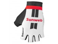Gants Courts Route GIANT Team Sunweb