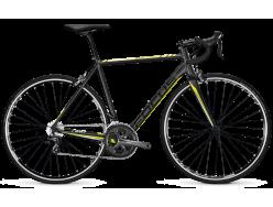 Vélo de course FOCUS Cayo AL Tiagra Gris mat