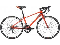 Vélo enfant GIANT TCR Espoir 26