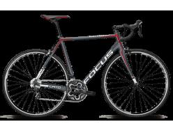 Vélo de course FOCUS Cayo Al 105